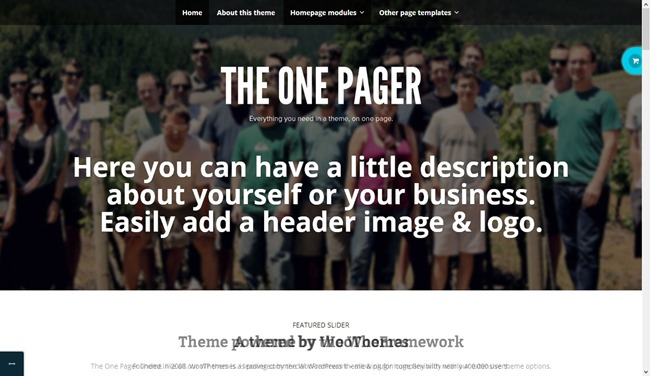 The One Pager - Fully Customizable One-Page WordPress Theme