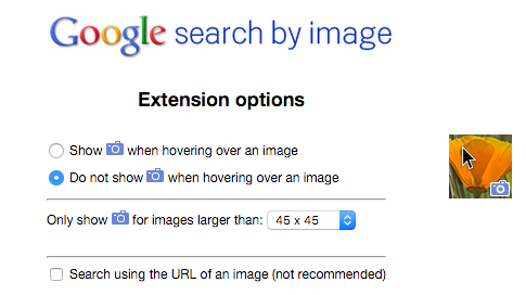 Search by Image Options